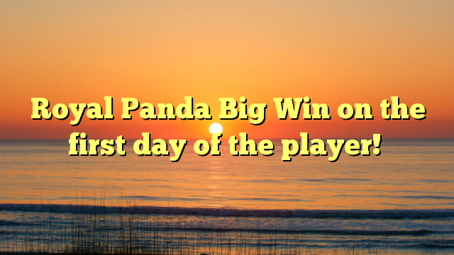 Royal Panda Big Win on the first day of the player!